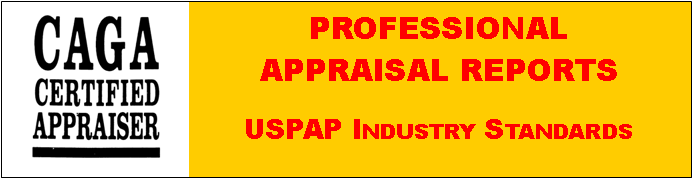 professional appraisal reports
